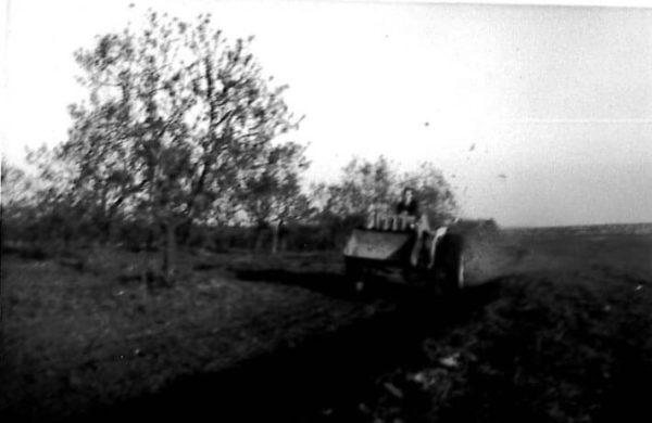 Foto Agricola Corleto 2