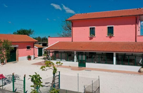 Foto Azienda 1