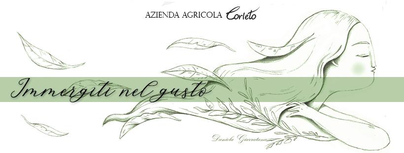 Banner Corleto